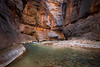 Zion, The Narrows - Alcove and curve in river