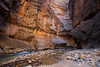 Zion, The Narrows - Colorful alcove at river bend