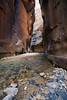 Zion, The Narrows - Entering a very narrow section of the river