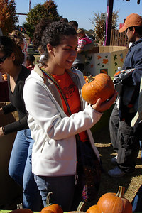 Andrea, picking a pumpkin - Centreville, VA ... October 15, 2006 ... Photo by Rob Page III