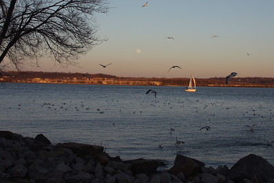 A 'typical' February evening along the Potomac - Alexandria, VA ... February 9, 2009 ... Photo by Rob Page III