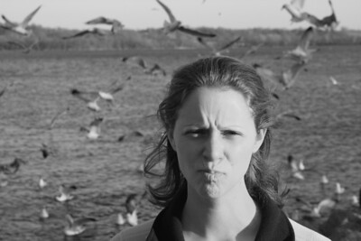 Emily with all the angry gulls - Alexandria, VA ... February 8, 2009 ... Photo by Rob Page III