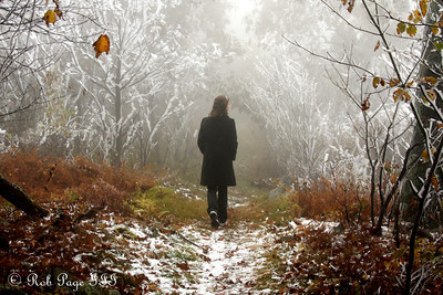 Emily meanders through the frozen forest - Shenandoah NP, VA ... October 17, 2009 ... Photo by Rob Page III