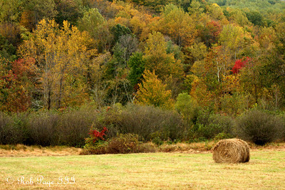 A farmer's field - Sperryville, VA ... October 18, 2009 ... Photo by Rob Page III