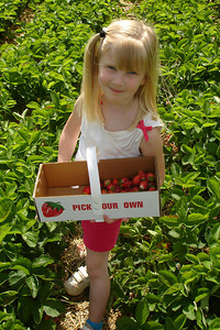 Laura and her strawberries - Richmond, VA ... May 19, 2007 ... Photo by Rob Page III