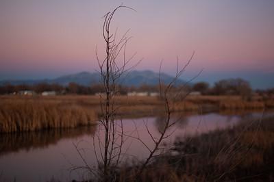 San Luis Valley, Colorado, 2019
