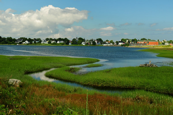 Beach Meadows marsh