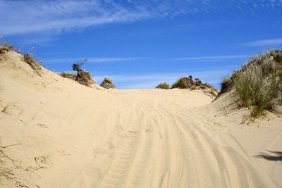 The trails - Oregon Sand Dunes National Recreation Area, OR ... July 29, 2006 ... Photo by Bob Page, Jr.