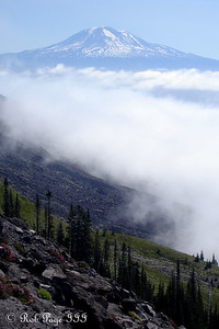 Mt. Adams across the valley - Mount St. Helens National Volcanic Monument, WA ... July 28, 2006 ... Photo by Rob Page III