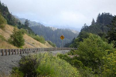 Rt 101 along the Oregon Coast ... July 29, 2006 ... Photo by Rob Page III