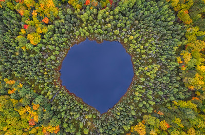 Heart of the Northwoods - Fall Edition