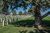 Little Bighorn National Cemetery, Wyoming