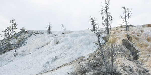 Mammoth Hot Springs Terraces, Yellowstone National Park, Wyoming