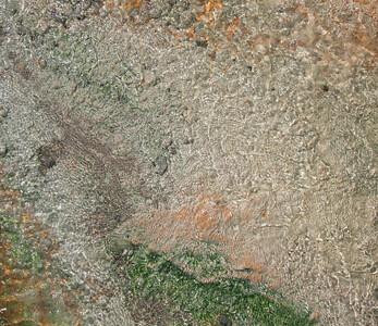 Algae, Bacteria in Mammoth Hot Springs, Yellowstone National Park, Wyoming