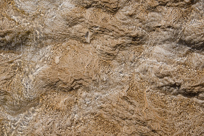 Stream Bed, Mammoth Hot Springs, Yellowstone National Park, Wyoming