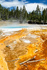 Yellowstone, Landscape - Colorful thermal pools with surrounding forest