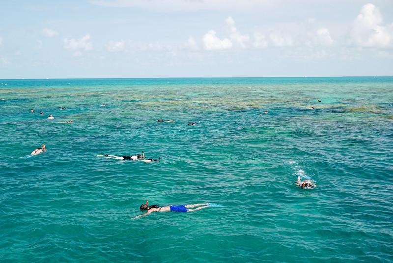 Snorkelers in Key West, Florida