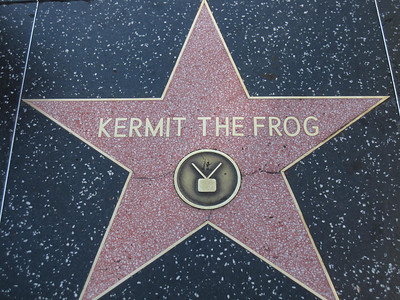 Kermit the Frog Star on the Hollywood Walk of Fame