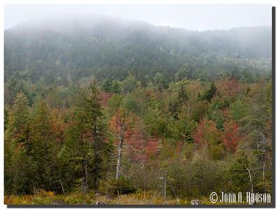 2939_J9232377-Maine : Autumn colours west of Southwest Harbor, Mount Desert Island