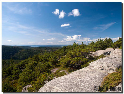 2937_J9212370-Maine : From the summit of Acadia Mountain, Acadia NP, Mount Desert Island