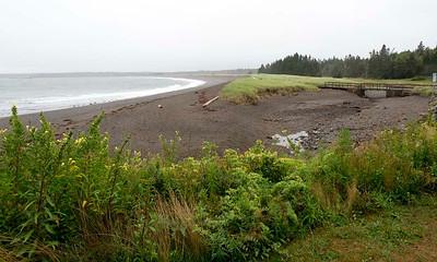 P9023617 - Herring Cove, Campobello Island, NB
