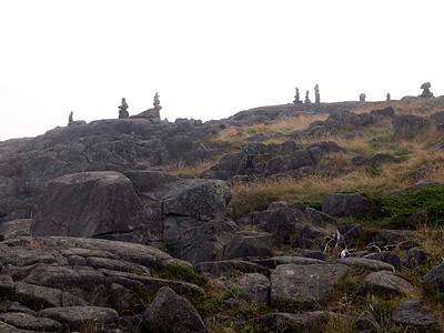 P9013609 - Quoddy Head State Park, Maine [near Lubec]