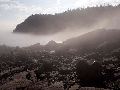 P9013602 - Quoddy Head State Park, Maine [near Lubec]