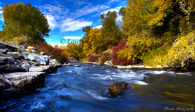 Provo River in Autumn