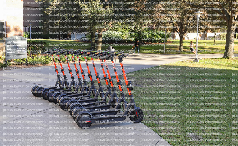 ORLANDO, FLORIDA, USA:  Electric scooters lined up and ready to rent on the University of Central Florida, (UCF) campus as seen on January 26, 2020.