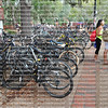 Bicycling is one of the most popular modes of student transportation at the University of Florida.