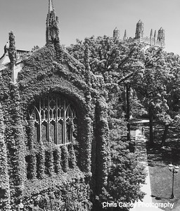 Bond Chapel and Classics Quad