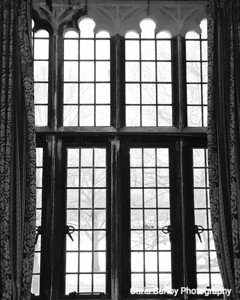 Ida Noyes Hall, Library Lounge Windows