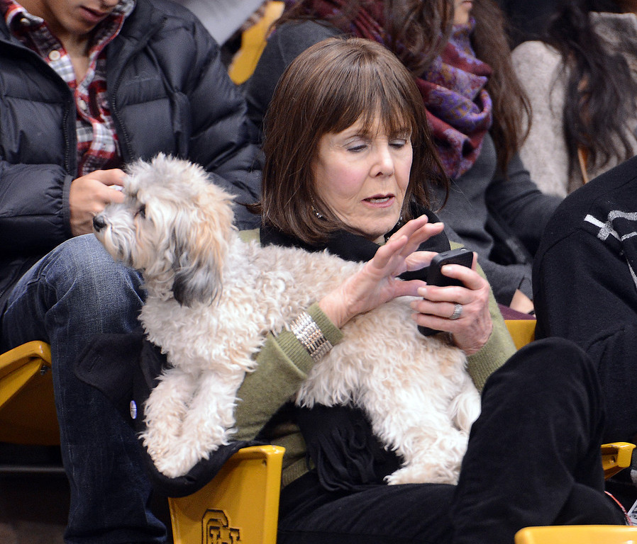 """Sheila Mells was able to bring her dog, Jazmyne, to the graduation on Friday. She had a grandson graduating.<br /> The University of Colorado Boulder held its winter commencement ceremony on Friday, Dec. 21, in the Coors Events Center<br /> For more photos and a video of graduation, go to  <a href=""""http://www.dailycamera.com"""">http://www.dailycamera.com</a>.<br /> Cliff Grassmick  / December 21, 2012"""