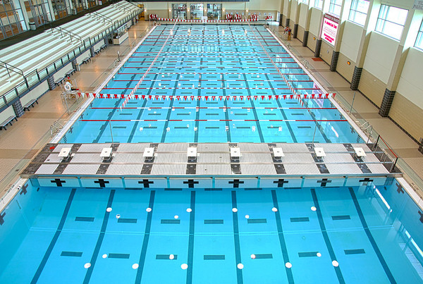 UH Swim Team 2011