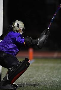 Lynchburg Hornets Women's Field Hockey