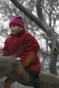 Girl in tree