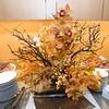 11-30-2009_JAbreu_017