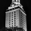 UT Tower and Tree, B&W