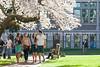 University of Washington Students 75