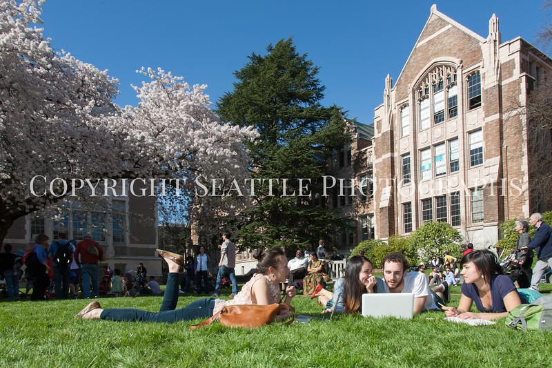 University of Washington Students 70