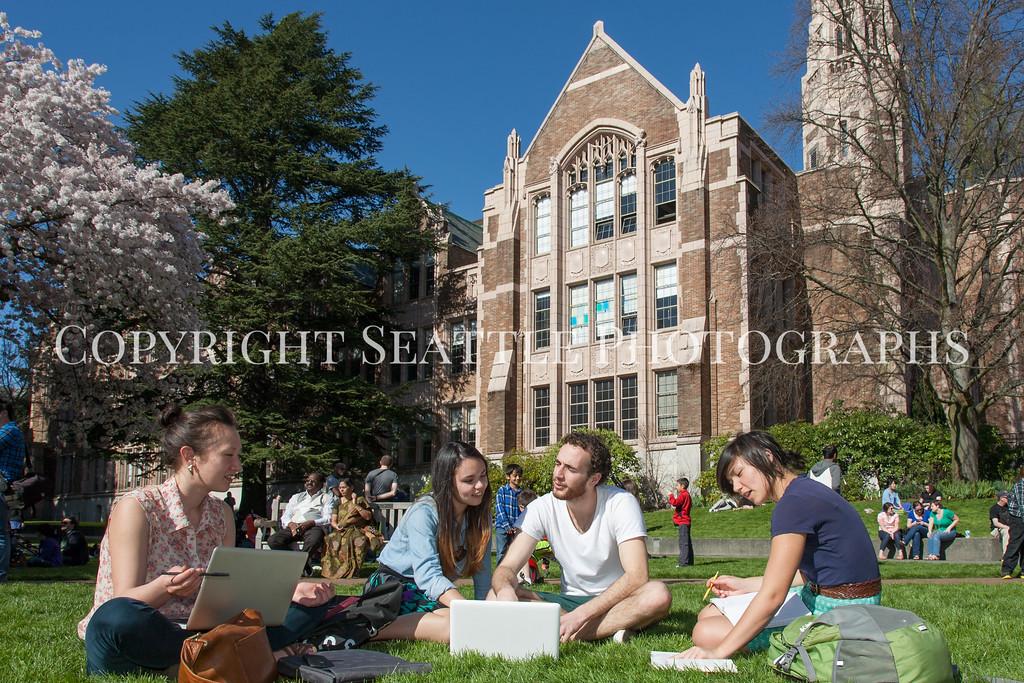 University of Washington Students 61