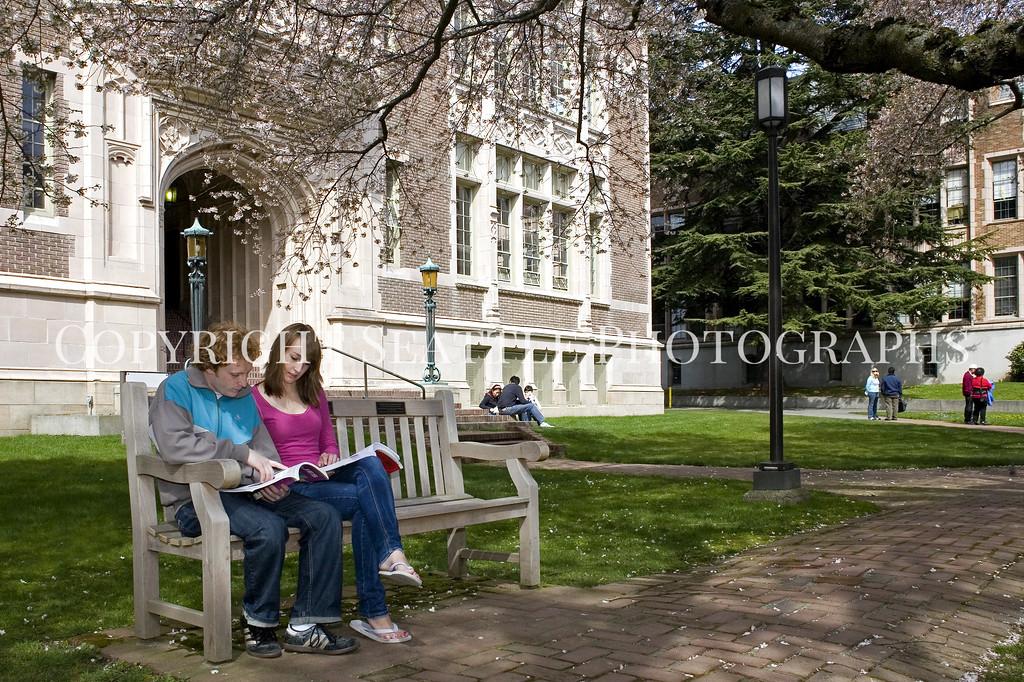 University of Washington Students 123