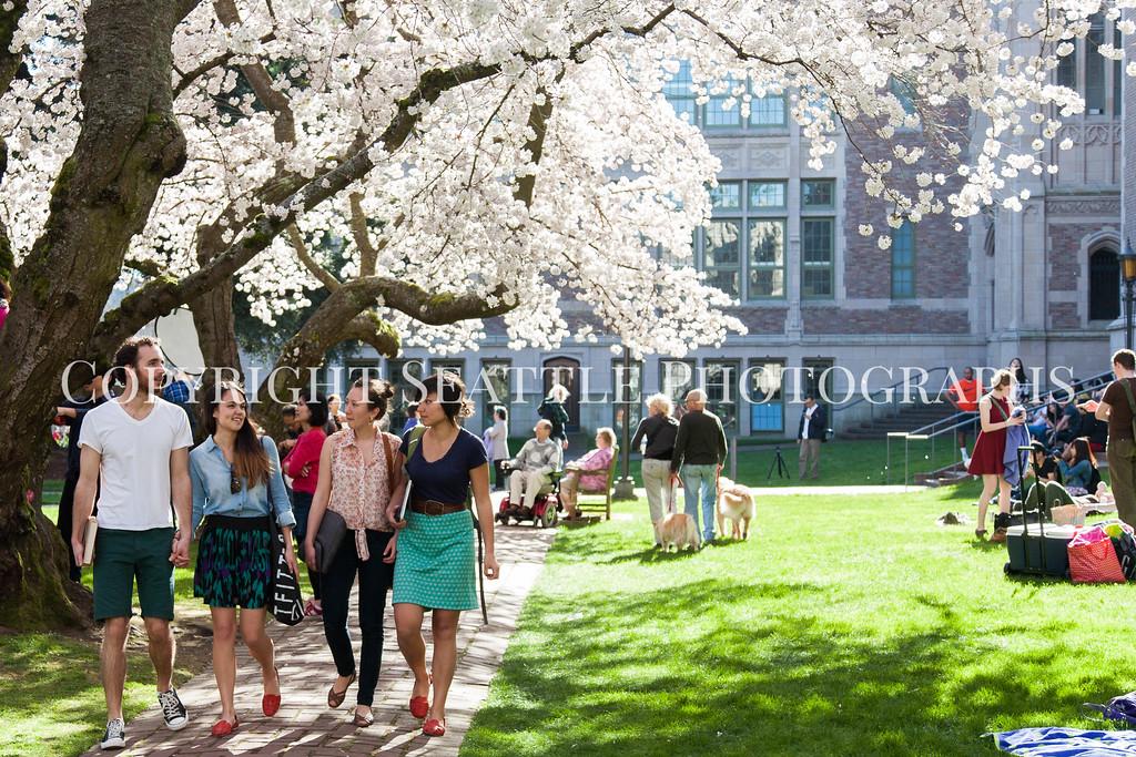 University of Washington Students 74