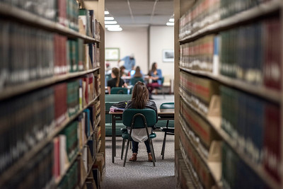 Students study in the Meriam Library on Tuesday, February 14, 2017 in Chico, Calif.  (Jason Halley/University Photographer)