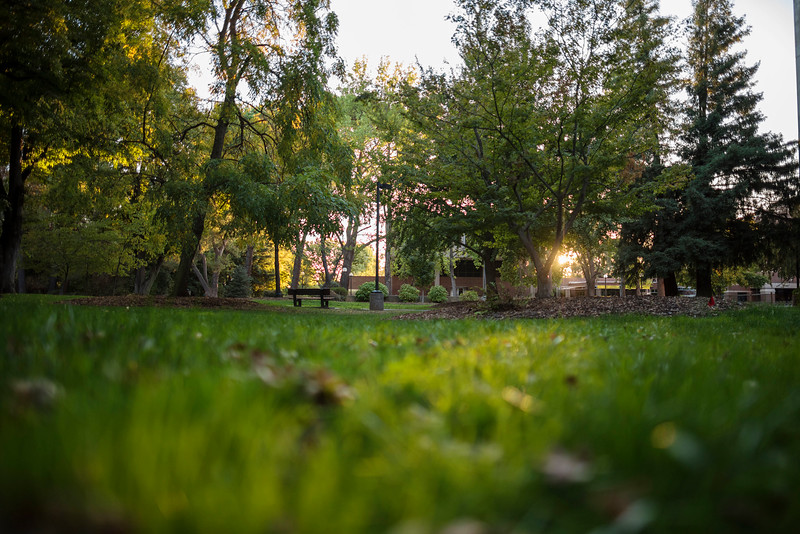 The sun sets in the grass field in front of Butte Hall on Saturday, October 7, 2017 in Chico, Calif.<br /> (Jason Halley/University Photographer)