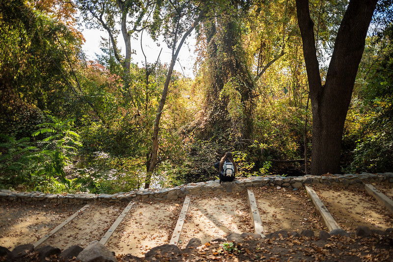 Kayla Lawson sits along the pathway to Alumni Glen next to Big Chico Creek on Monday, October 30, 2017 in Chico, Calif.<br /> (Jason Halley/University Photographer)