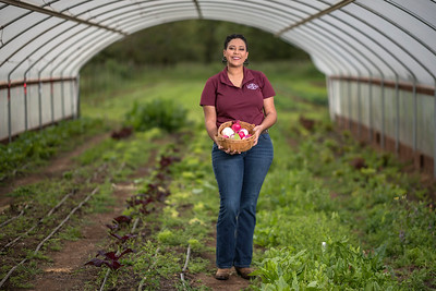 Kaeli McCarther, is photographed at the Organic Vegetable at the University Farm on Tuesday, April 25, 2017 in Chico, Calif. Kaeli is a senior completing a bachelor's degree in agriculture, with an option in agricultural science and education. She is the founding president of the United Students of Agriculture Club, a chapter of the National Minorities in Agriculture, Natural Resources, and Related Sciences (MANRRS) organization (Jason Halley/University Photographer)