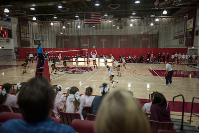 Chico State Wildcats #14 McKenna Carroll (center) sets against Cal State Stanislaus Warriors during the first match of their volleyball game on Thursday, October 19, 2017 in Chico, Calif. (Jason Halley/University Photographer)