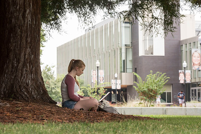 Kaylene Baird (PSYC junior, 23) works on her laptop on the Kendall Hall lawn on Monday, August 22, 2017 in Chico, Calif. (Jason Halley/University Photographer)