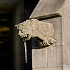 Gargoyle at SW entrance to Gerberding Hall